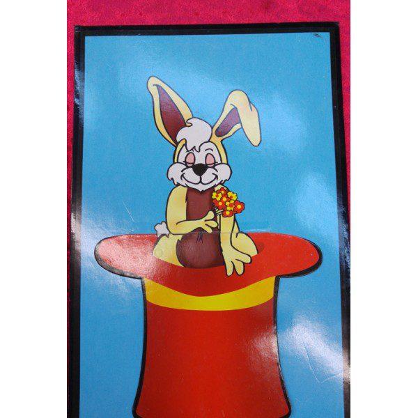תמונה ארנב מכובע 251